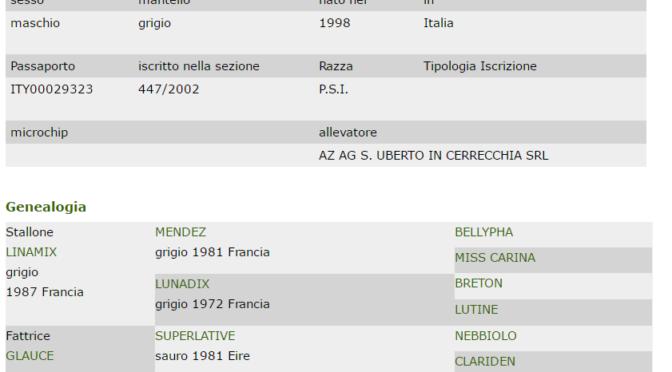 Banca dati Galoppo SOPRAN GLAUMIX