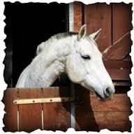Alloggiare il Cavallo
