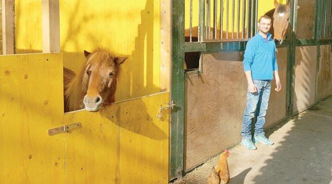 Il ragazzo che sussurra ai cavalli feriti dall'uomo