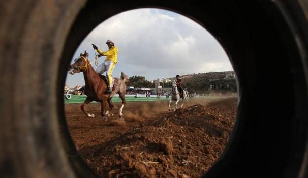 """Messina: corsa clandestina di cavalli in pieno giorno"""""""