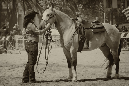 Successo per la 9° edizione di cavalli in spiaggia a Vado Ligure