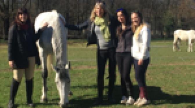 Psicologia, i cavalli 'indossano il camice' per curare 4 donne