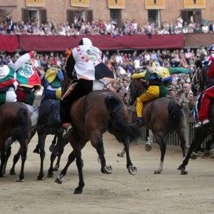 Cavalli taroccati per il Palio di Siena, un fantino sardo a processo