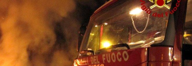 Rogo in scuderia, morti 30 cavalli bruciati anche esemplari da corsa