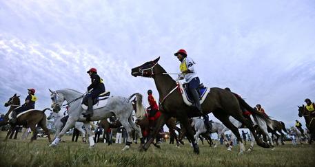 Ippica: Endurance, dominio Emirati